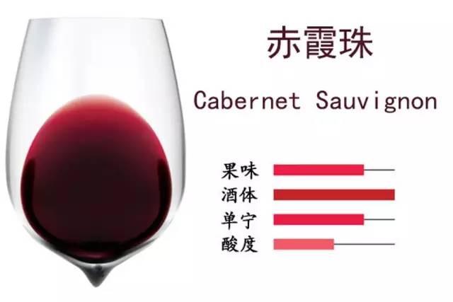 葡萄酒的灵魂——葡萄品种之赤霞珠